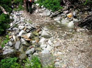 Creek across Twisp Pass Trail