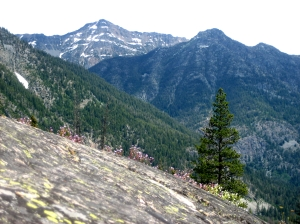 Overlooking Abernathy Ridge