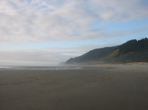 misty Oregon coast