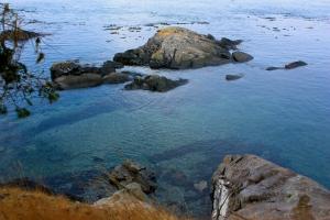 Sharks Reef, Lopez Island