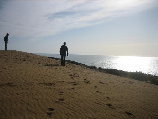 Coastal Dunes, Los Osos CA
