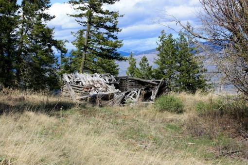 falling down cabin McClure WA