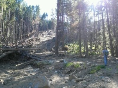War Creek landslide Okanogan Forest WA