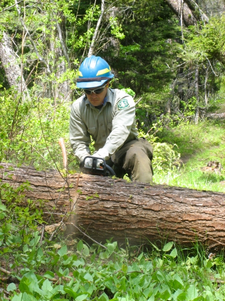 forest ranger clearing trail Okanogan National Forest