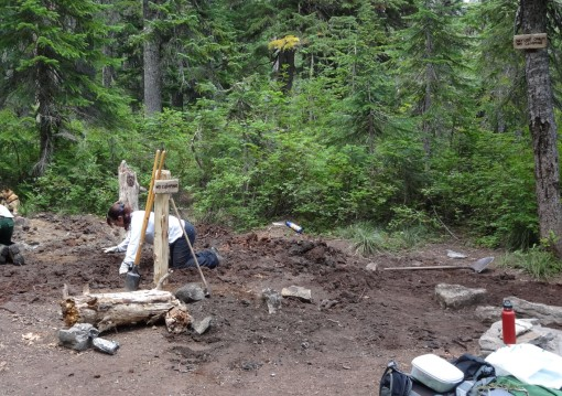 campsite restoration, Thomas Lakes, Indian Heaven Wilderness WA