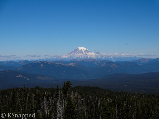 view of Mt Rainer from north side of Mt Adams, WA