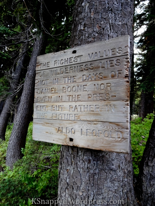 wilderness sign, Yakima Mt Adams, WA