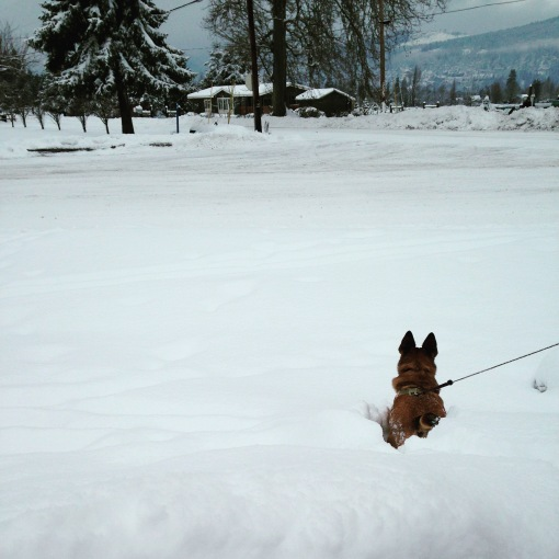 snowday Hood River OR