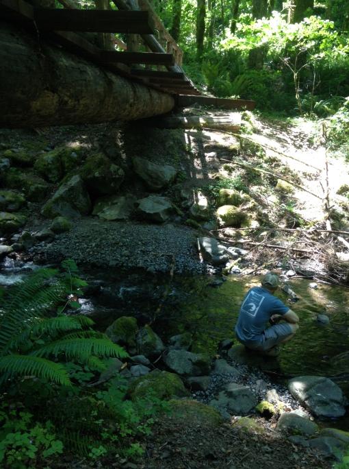 Wyeth trailhead, Columbia Gorge
