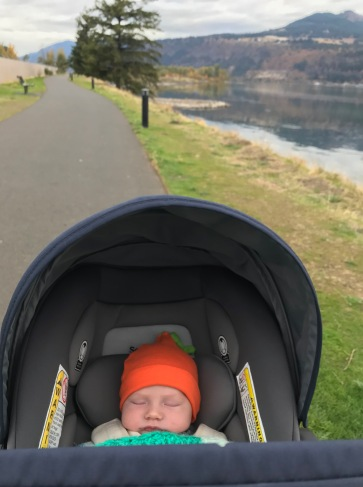 stroller ride on the waterfront, Hood River OR